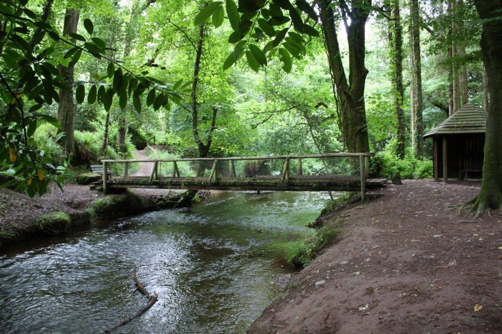 Glenbower Woods | www.ringofcork.ie | Ring of Cork
